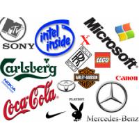 Establishing a Strong Brand